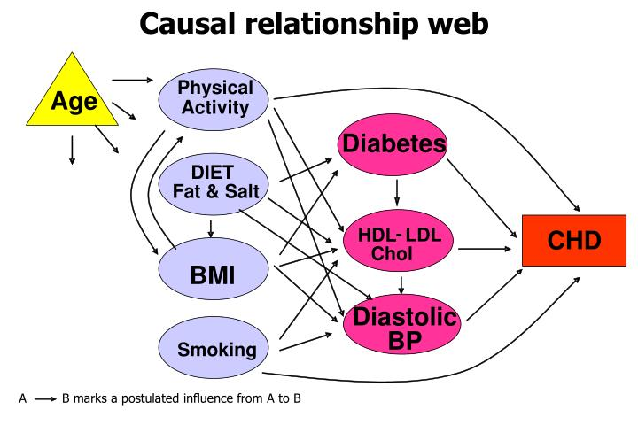 Causal relationship web