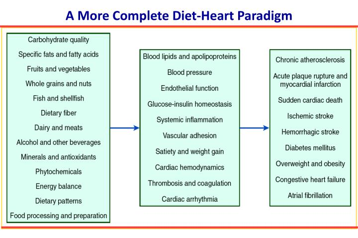A More Complete Diet-Heart Paradigm
