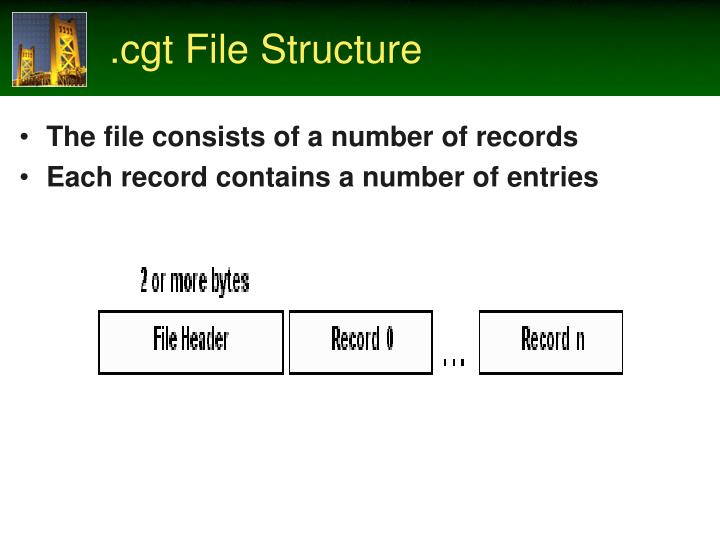 .cgt File Structure