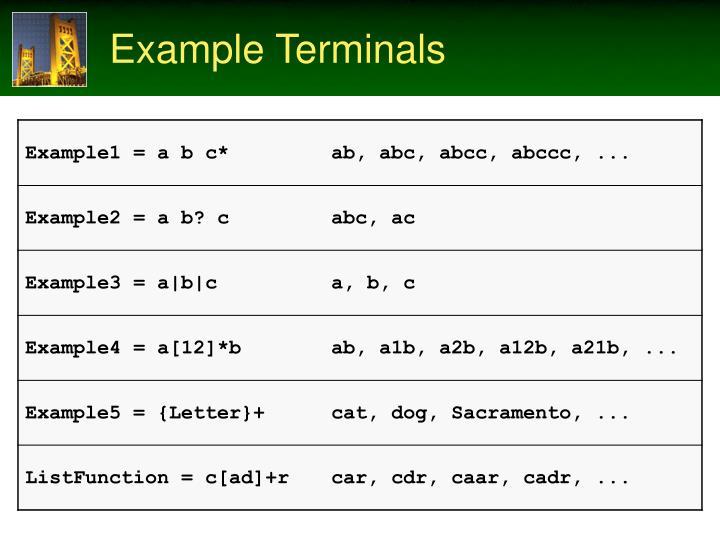 Example Terminals