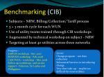 benchmarking cib