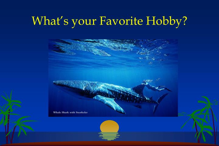 What s your favorite hobby