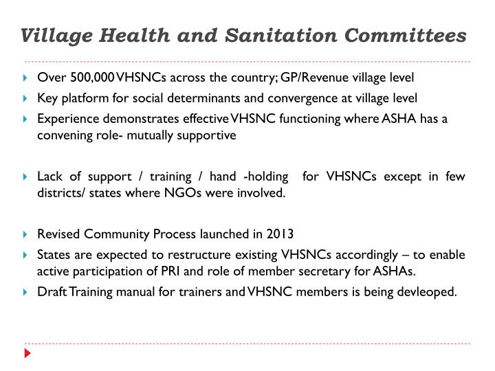Village Health and Sanitation Committees