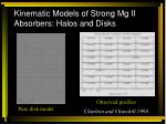 kinematic models of strong mg ii absorbers halos and disks1