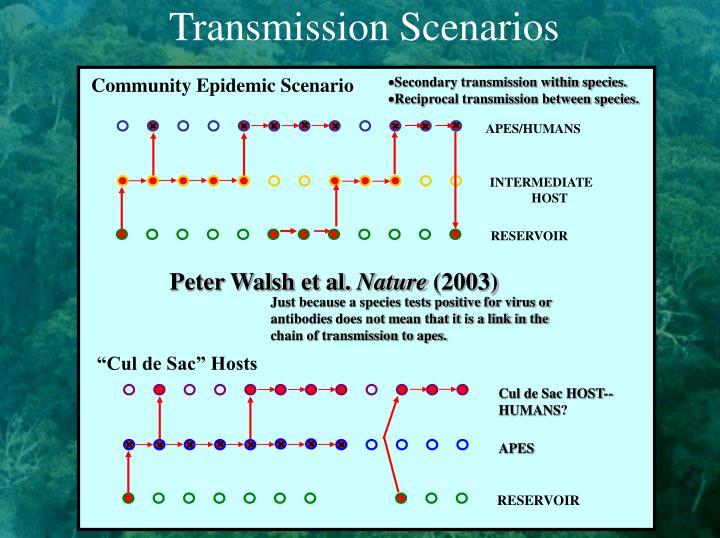 Transmission Scenarios