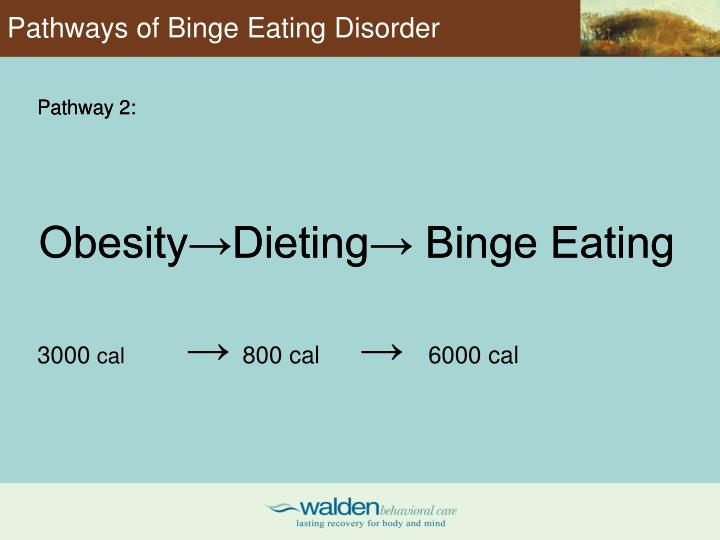 Pathways of Binge Eating Disorder