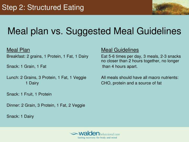 Step 2: Structured Eating