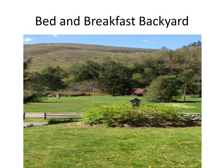 Bed and Breakfast Backyard