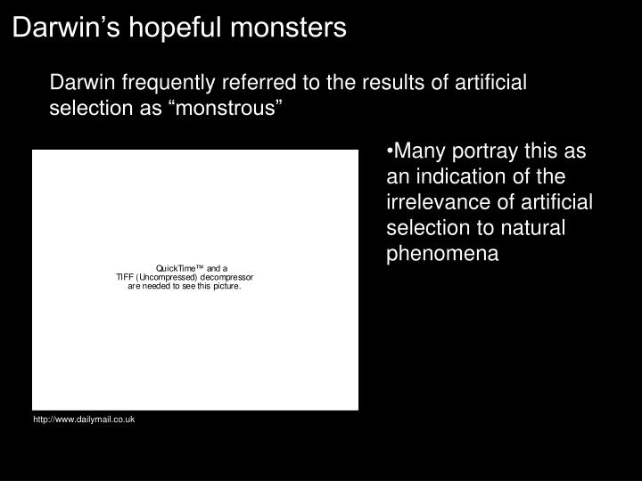 Darwin's hopeful monsters