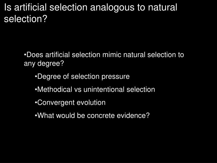 Is artificial selection analogous to natural selection?