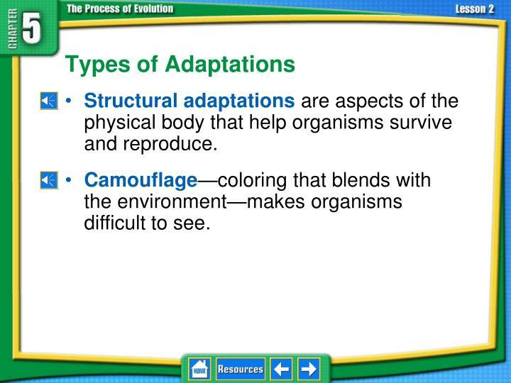 5.2 Adaptation and Extinction