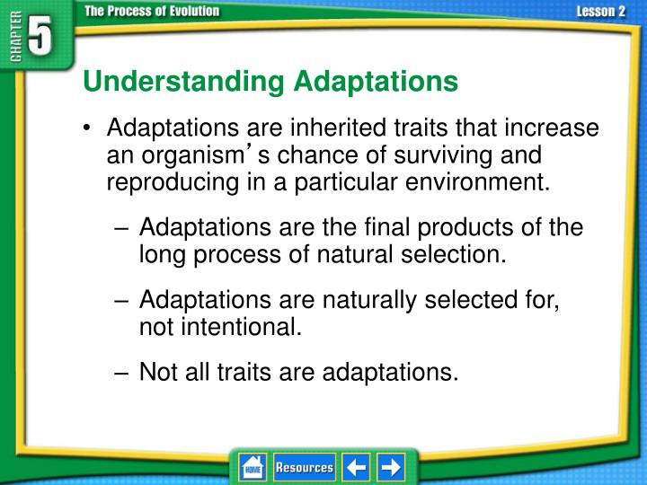 5.2 Adaptation and Extinction