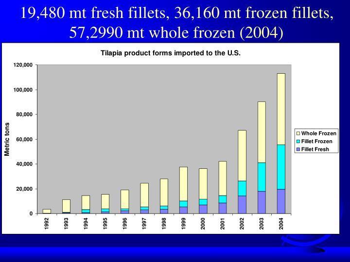 19,480 mt fresh fillets, 36,160 mt frozen fillets, 57,2990 mt whole frozen (2004)