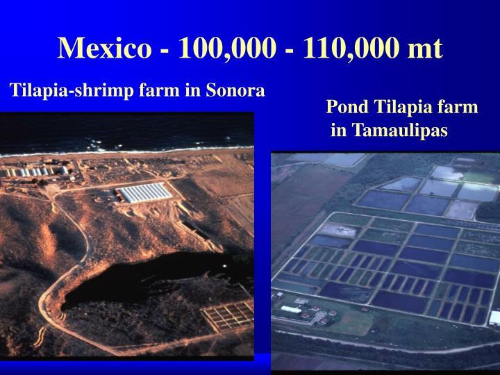 Mexico - 100,000 - 110,000 mt