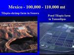 mexico 100 000 110 000 mt