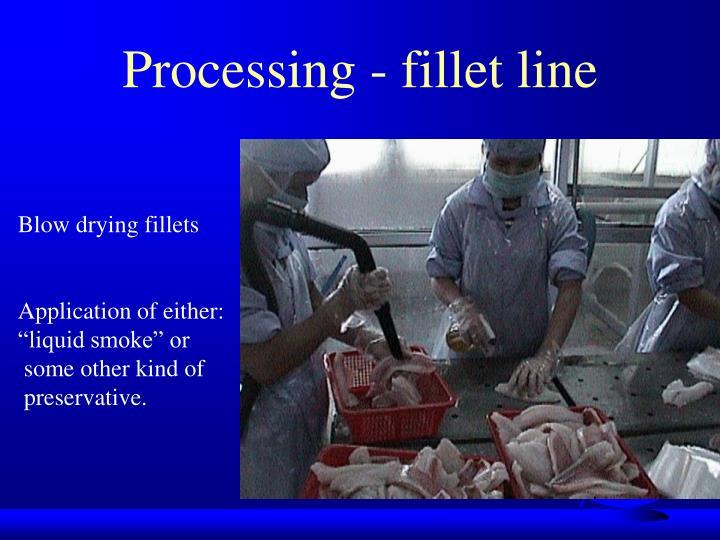 Processing - fillet line