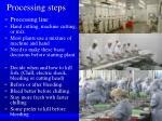 processing steps1