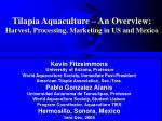 tilapia aquaculture an overview harvest processing marketing in us and mexico