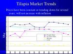 tilapia market trends