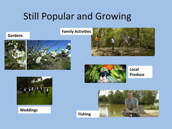 Still Popular and Growing