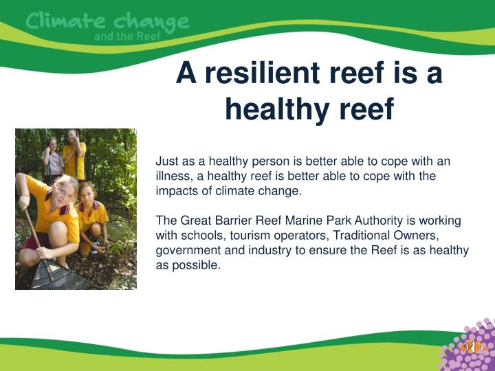 A resilient reef is a healthy reef