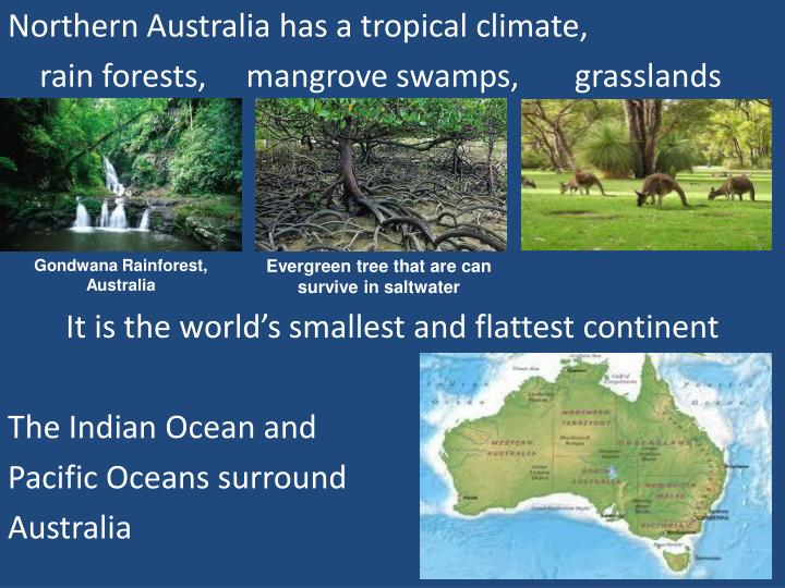 Northern Australia has a tropical climate,