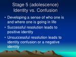 stage 5 adolescence identity vs confusion