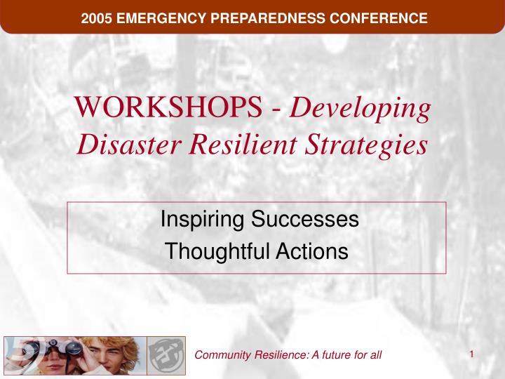 workshops developing disaster resilient strategies