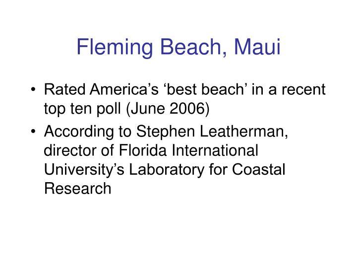 Fleming Beach, Maui