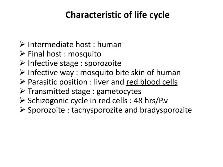Characteristic of life cycle