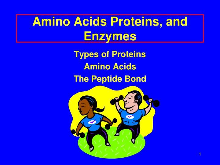 Amino Acids Proteins, and