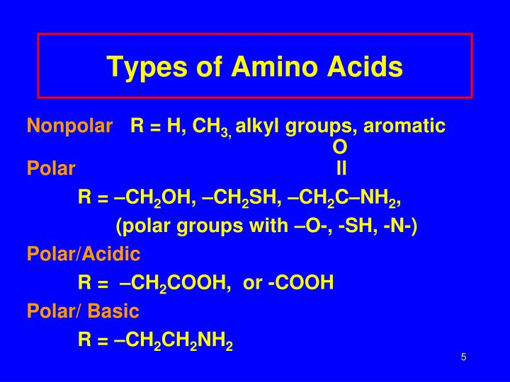 Types of Amino Acids