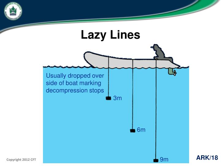 Lazy Lines