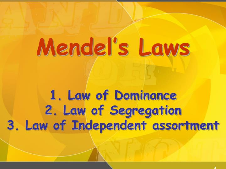 Mendel s laws 1 law of dominance 2 law of segregation 3 law of independent assortment