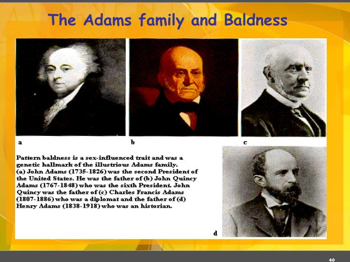 The Adams family and Baldness