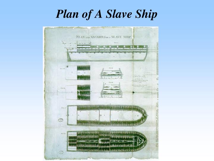 Plan of A Slave Ship
