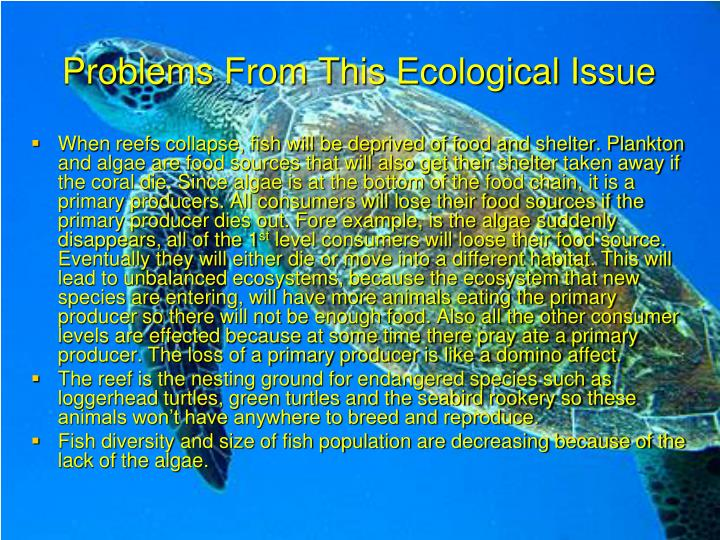 Problems From This Ecological Issue