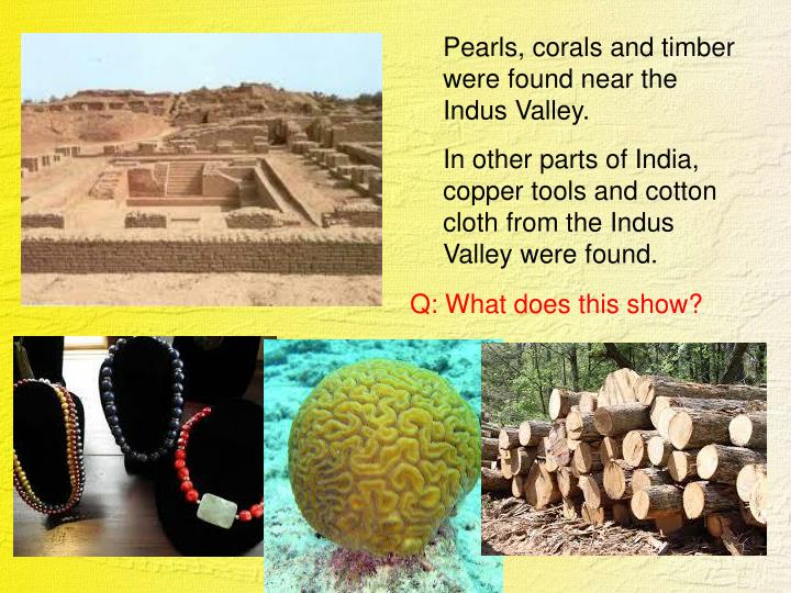 Pearls, corals and timber were found near the Indus Valley.