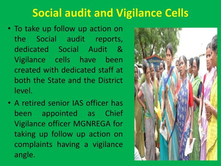 Social audit and Vigilance Cells