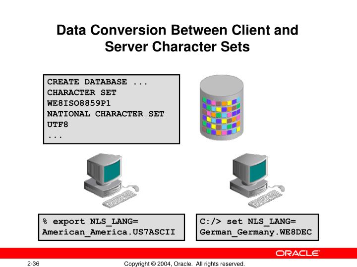 Data Conversion Between Client and Server Character Sets
