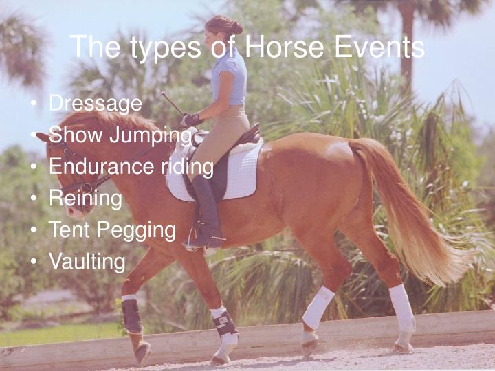 The types of Horse Events