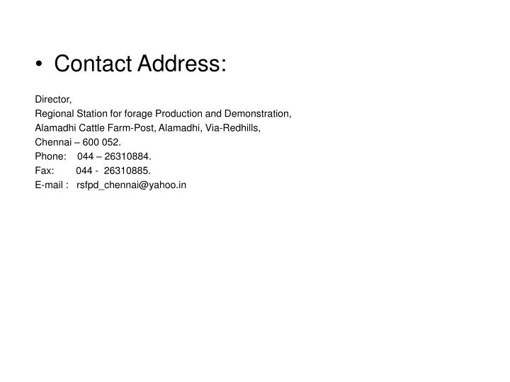 Contact Address: