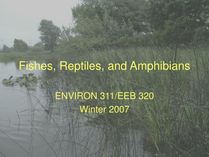Fishes, Reptiles, and Amphibians