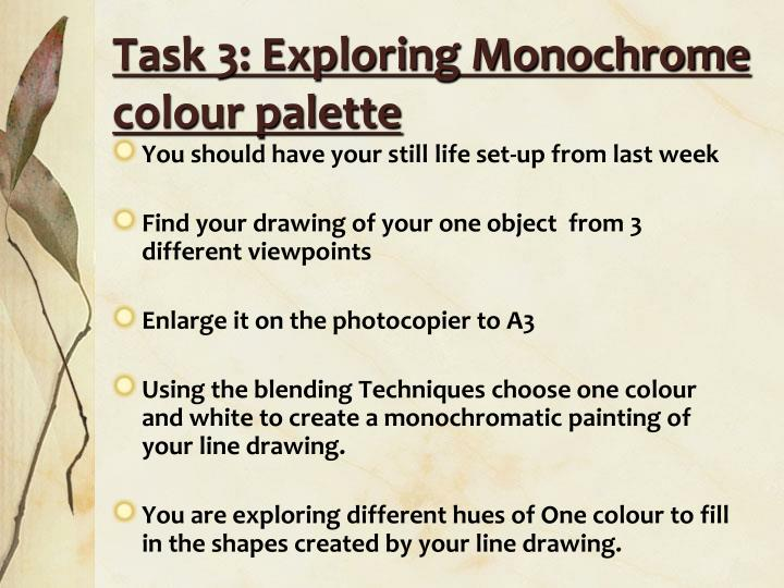 Task 3: Exploring Monochrome colour palette