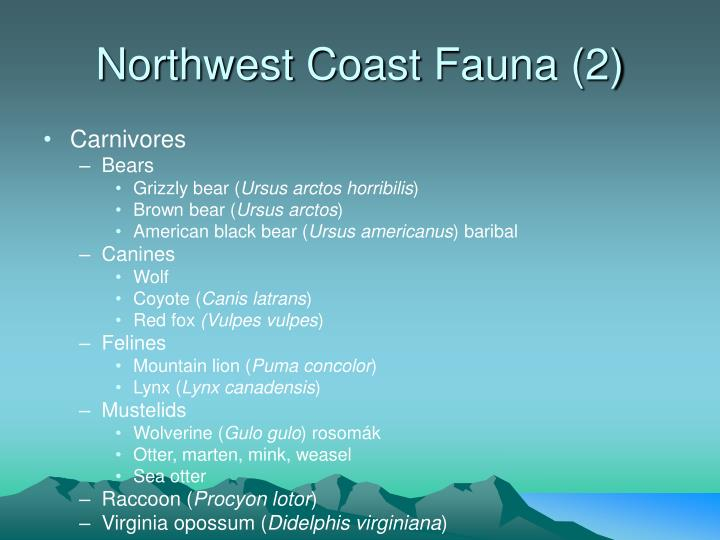 Northwest Coast Fauna (2)