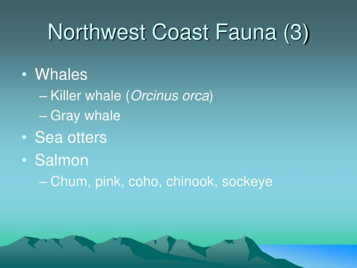 Northwest Coast Fauna (3)