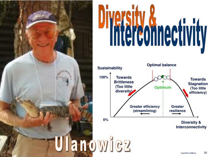 Diversity &