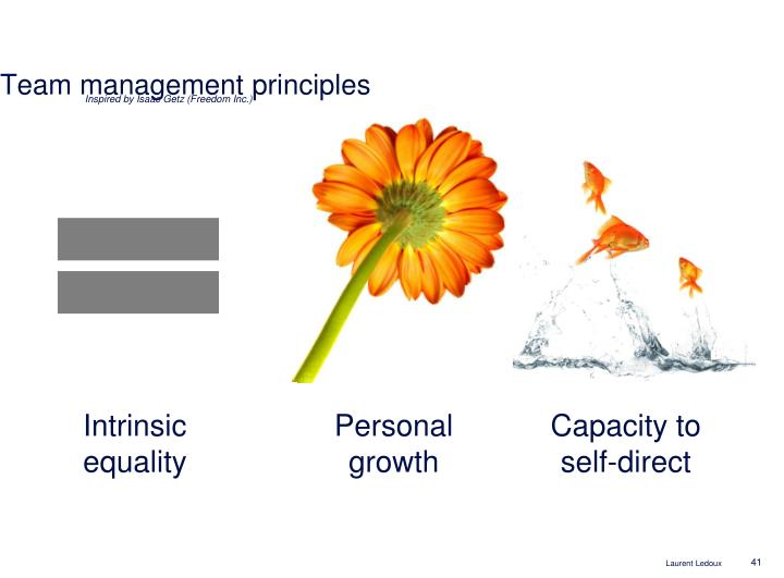 Team management principles