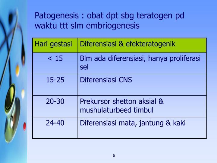 Patogenesis : obat dpt sbg teratogen pd waktu ttt slm embriogenesis