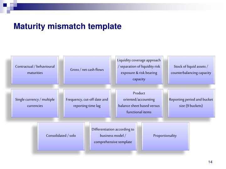 Maturity mismatch template